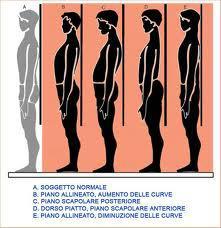 ginnastica-posturale roma 11
