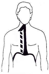 ginnastica-posturale roma 3