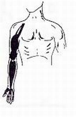 ginnastica-posturale roma 5
