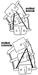 ginnastica-posturale roma 8
